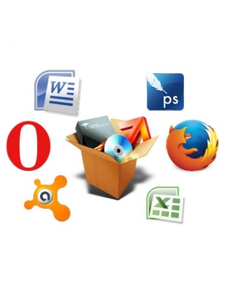 Servicii de instalare software.
