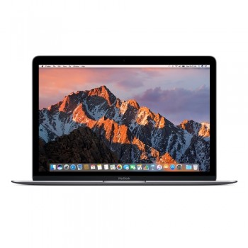 "APPLE MacBook 12.0"" (2017) Space Gray"